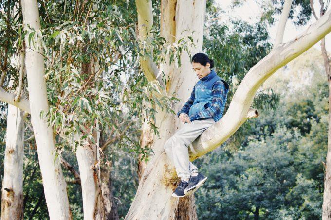 メルボルン自宅前公園での木登り写真